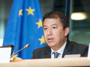Patrick Ky, director de EASA, ante la Comisión de Transopirtes de la Eurocámara